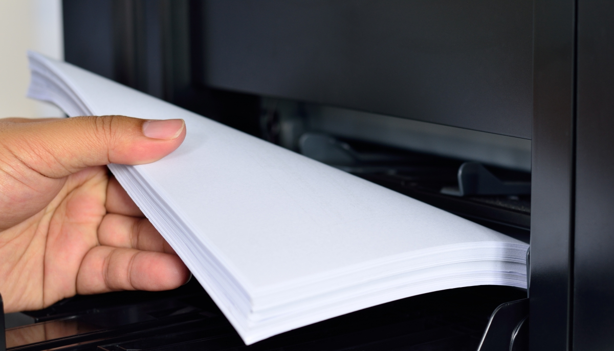 Close up multifunction printer  paper feed